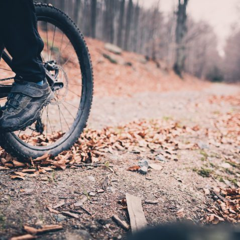 Mountain biker on cycle trail in woods. Mountains in winter or autumn landscape forest. Man cycling MTB on rural country road. Sport fitness motivation and inspiration. Selective focus on pedal and bike wheel.