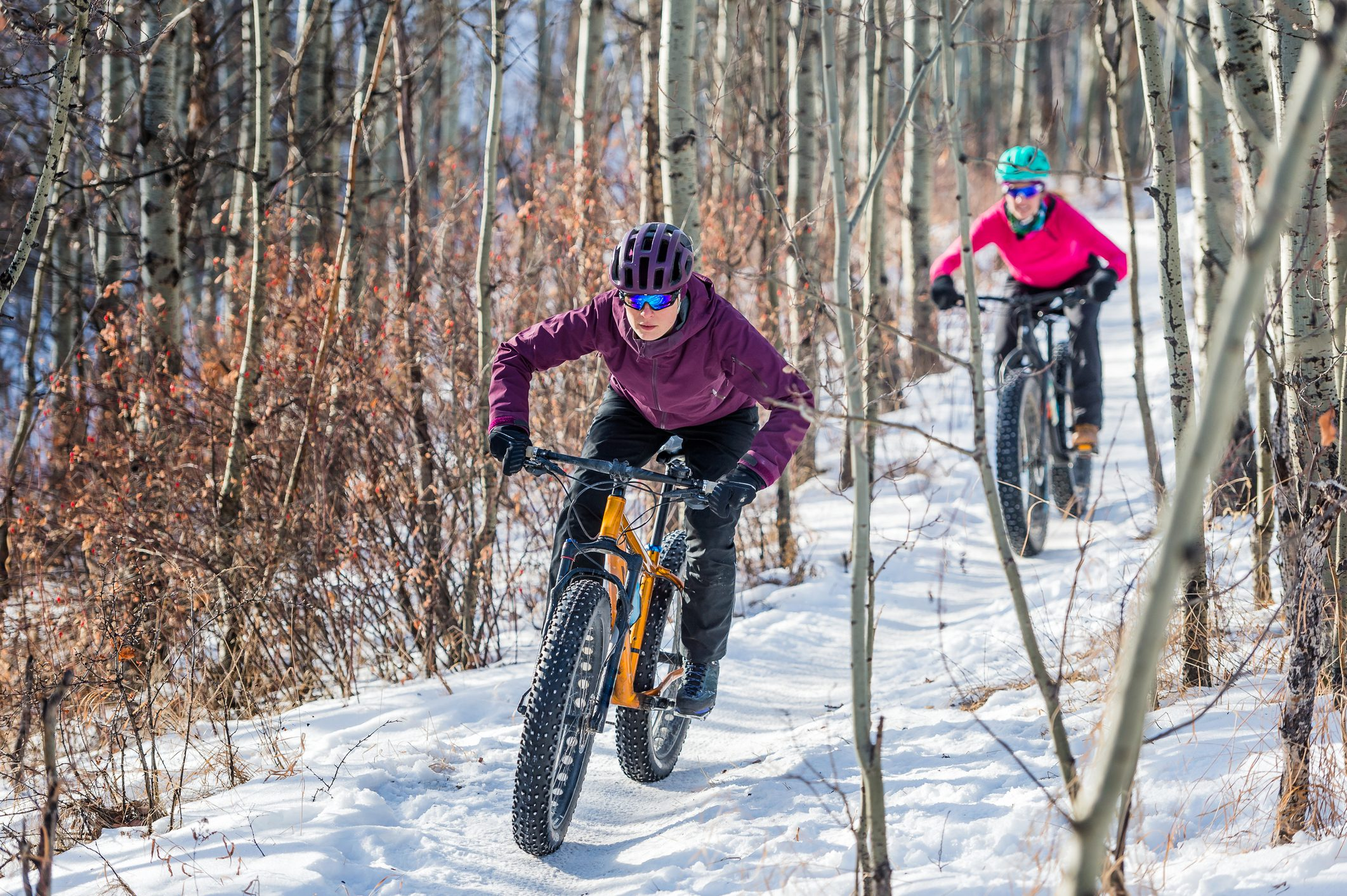 two female athletes riding fat bikes in the snow